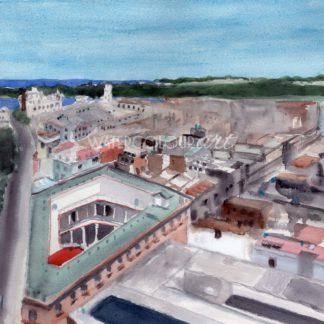 Havana Rooftop View